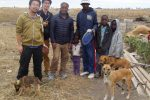 Mehrere Männer und drei Hunde stehen nebeneinander